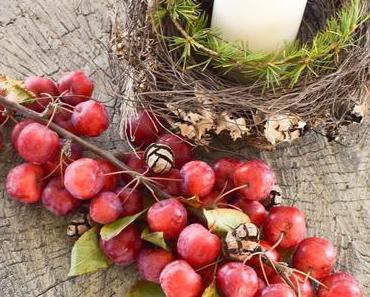 Habt ihr euch schon Zieräpfel geholt? Dekoideen und mehr!