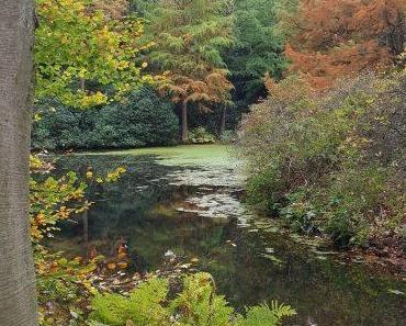 Herbsttage in Bremen