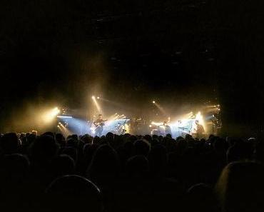 FINK Konzert