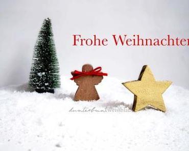 Weihnachtsessen ohne Stress: Hirschfilet mit Semmelknödeln, Rotkraut und Whiskey-Sauce