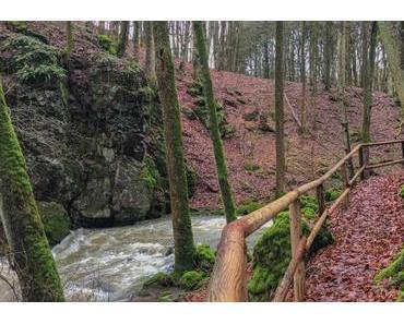 Wandern in der Vulkaneifel – Auf dem Mühlenweg zum Schutzalf, Strohner Schweiz und Immerather Maar