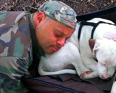 Wenn man im Tierschutz arbeitet muss man loslassen können