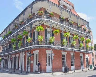 Louisiana Sehenswürdigkeiten – Meine schönsten Highlights und Tipps