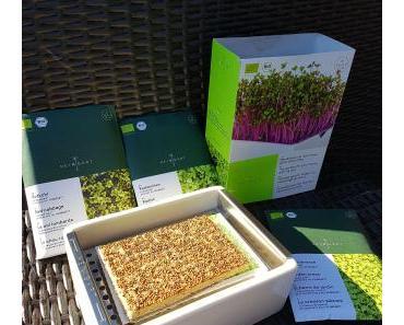 Heimgart – Microgreens Powerfood