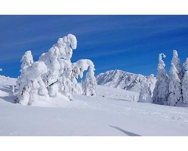 Bild der Woche: Turntalerkogel – Turnaueralm Winterlandschaft
