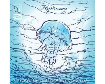 Hydrozoa [Hidden Shoal] - Feiner Labelsampler für lau ... Tipp!