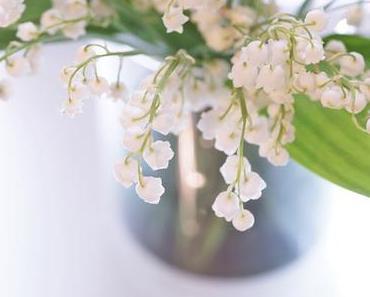 Friday-Flowerday 18/18
