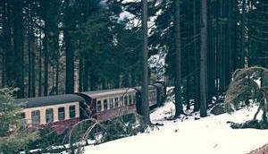 Brockentour Harz
