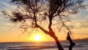 Sonnenuntergang Portixol
