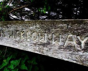 Auf dem Wicklow Way