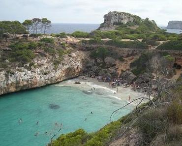 Qualleninvasion an idyllischem Mallorca-Strand