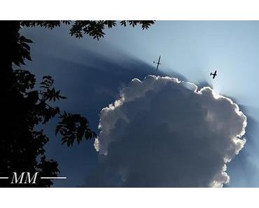Bild der Woche: Über den Wolken…