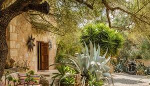 Preise Wohnungen Palma Calvià historischen Höchststand