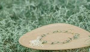 Home Wunderschöne, nachhaltige Holztabletts Schweden VERLOSEN Tabletts!!!