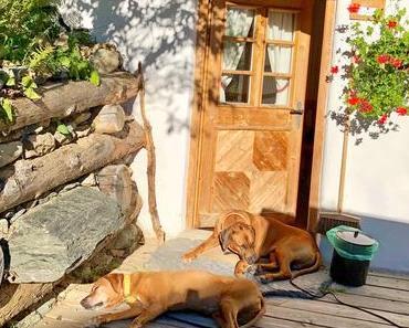 Das Almdorf Seinerzeit – Luxus in den Nockbergen