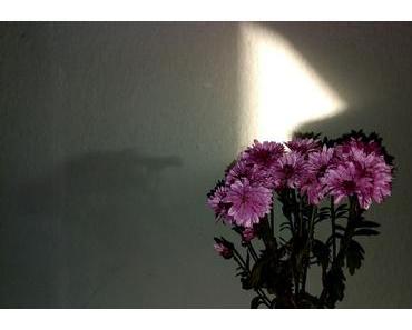 Foto: Schattenspiel an der Wand