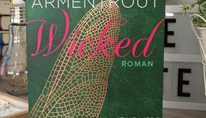 |Rezension| Jennifer Armentrout Eine Liebe zwischen Licht Dunkelheit Wicked