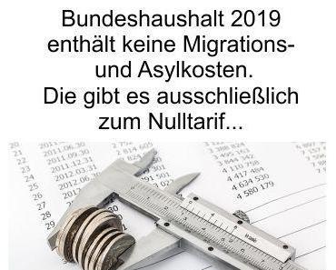 Bundeshaushalt 2019 ohne Haushaltsposten Migration und Asyl. Gibt es das zum absoluten Nulltarif?