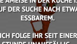 AMEISE KÜCHE SUCHE NACH...