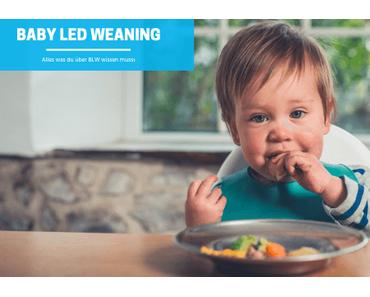 Baby Led Weaning – Alles Wichtige zu BLW!