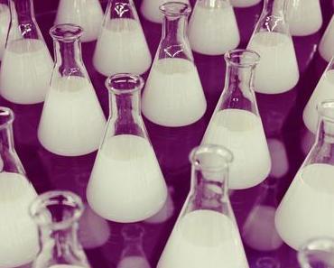 Cultural Fit – stimmt die Chemie?
