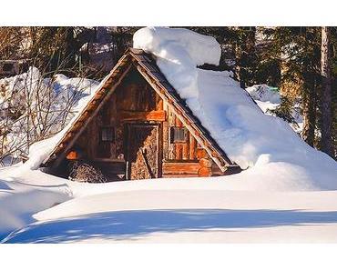 Bild der Woche:  Holzknecht-Hütte