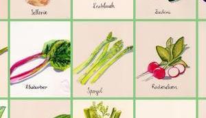 Mein Gemüseposter