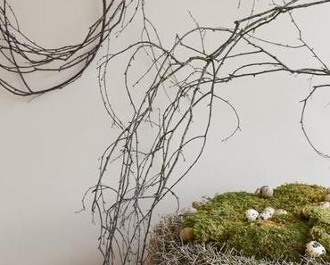 Deko mit Birke: Naturdeko für euer Sideboard und die Wand.