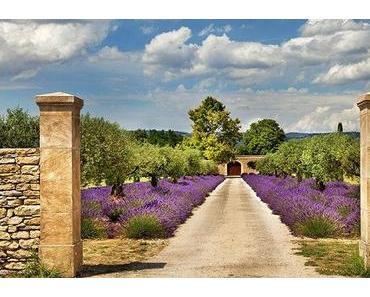 Wohnen im Lavendelgarten