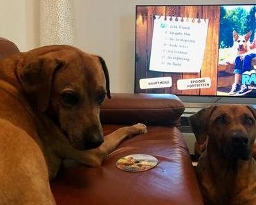 Für euch gesehen: Racko – ein Hund für alle Fälle