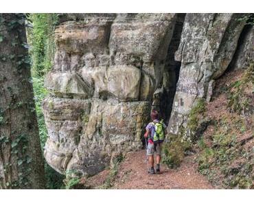 Der Müllerthal-Trail – Unsere 10 Top-Tipps für dich