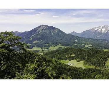 Bild der Woche: Gemeindealpe – Kleiner Ötscher – Ötscher Blick