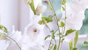 Friday-Flowerday 29/19