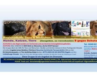 Regionalhilfe Tiere (Hunde, Katzen, Tiere) abzugeben mit neuer Web-Adresse