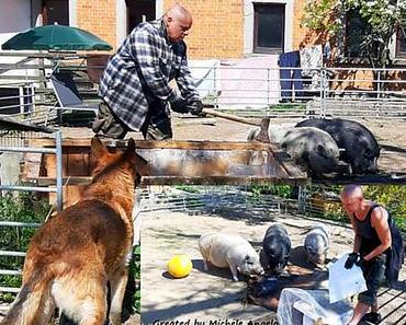 Tag für Tag arbeiten wir für geschundene und hilflose Tiere