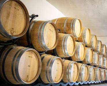 Blanca Terra, ein neues Weingut auf Mallorca, das von einer Frau geführt wird