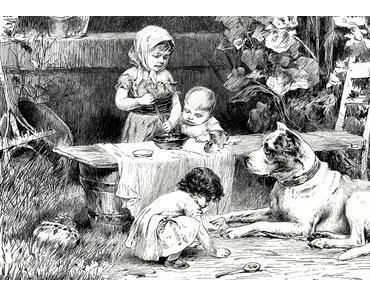 Hundeernährung leicht gemacht mit praktischen Beispielen