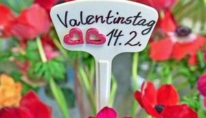 Valentinstag bedeutung freunde