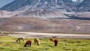 besten Chile Sehenswürdigkeiten, Tipps Highlights