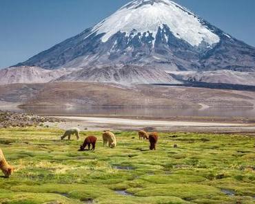 Die 19 besten Chile Sehenswürdigkeiten, Tipps & Highlights