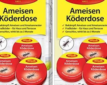Welche Mittel gegen Ameisen wirken zuverlässig?