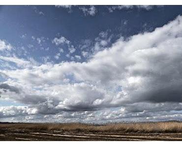 Der Van-Gogh-Himmel