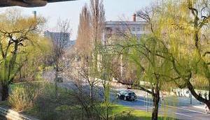 Frühling Halleschen Ufer