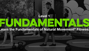 MovNat Level Fundamentals