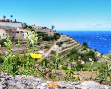 Zauberhaftes Mallorca: Ausflug nach Valldemossa, Banyalbufar & Port d'Andratx