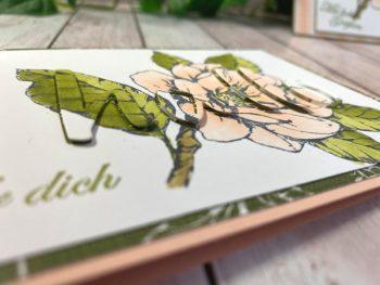 Kartentechnik Spotlight Cutting