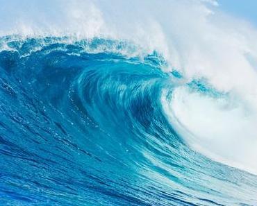 Mit aquatischen Sommerdüften eine frische Meeresbrise hautnah erleben