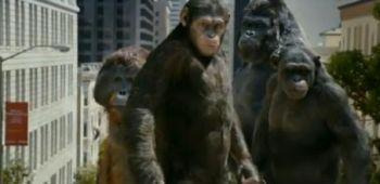 Neuer Trailer zu 'Planet der Affen: Prevolution'