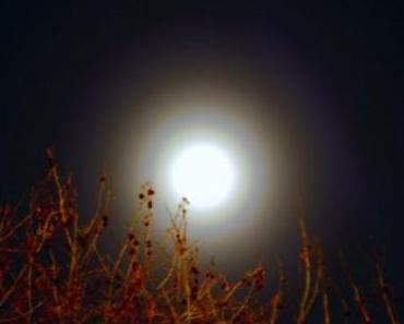 Beethoven – Mondscheinsonate (Sound Remedy) | Remix