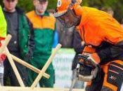 Deutsche Waldarbeitsmeisterschaft: STIHL Fahrer holen überragend Gold